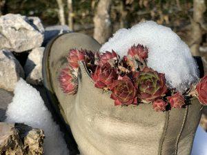 Schnee an den Schuhen